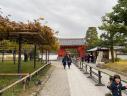 Uji Macha Town